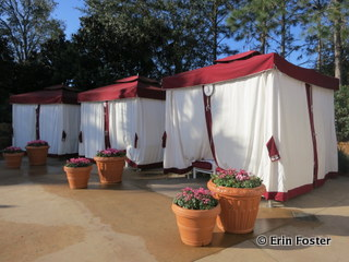 Private rental cabanas poolside at the Grand Floridian