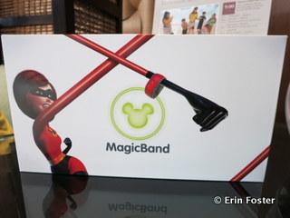 MagicBand presentation box.