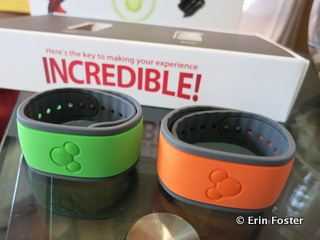 Our MagicBands.