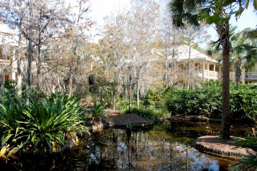 Port Orleans-Riverside (Bayou area)