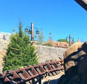 View from the tracks of the Seven Dwarfs Mine Train