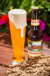 Redbridge Gluten-Free Sorghum Beer ©Disney