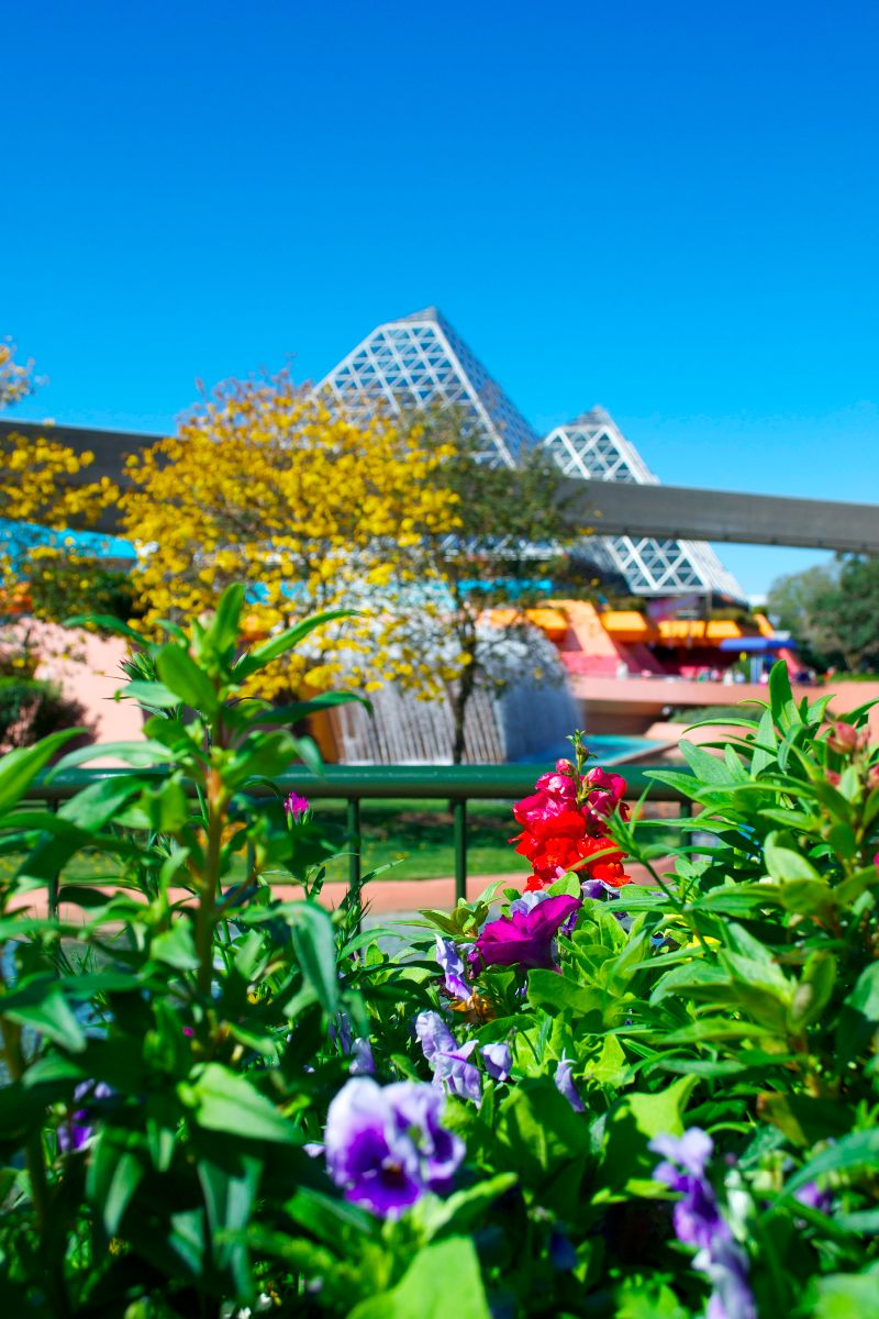 The topiaries are gorgeous, but be sure to take time to note the extra plantings around the park like these near the Imagination pavilion as well.