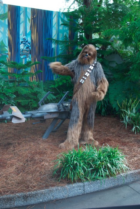 Chewbacca at Star Wars Weekends