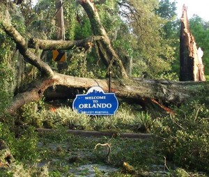 Orlando street view the morning after Hurricane Charley in 2004.  Photo by Thomas Cook