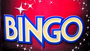 Disney Cruise Line Bingo 2