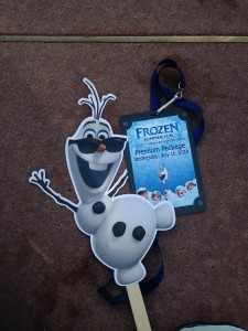 Frozen Summer Fun Premium Package Credentials