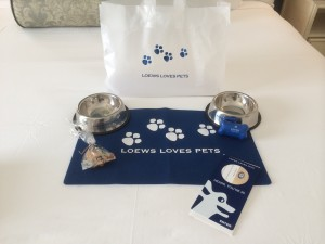 Loews loves pets goody bag