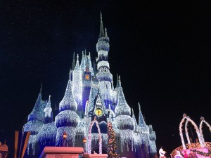 Cinderella Castle with Holiday Lights. Photo - Laurel Stewart