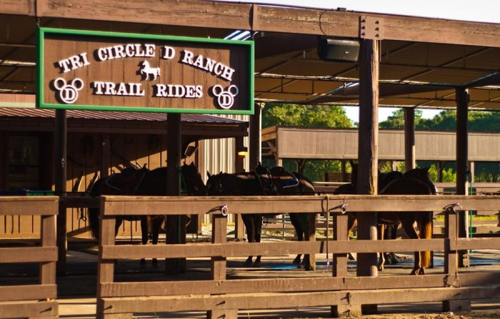 Tri Circle D Ranch