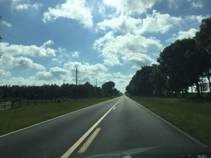 Country road in Marion County, FL