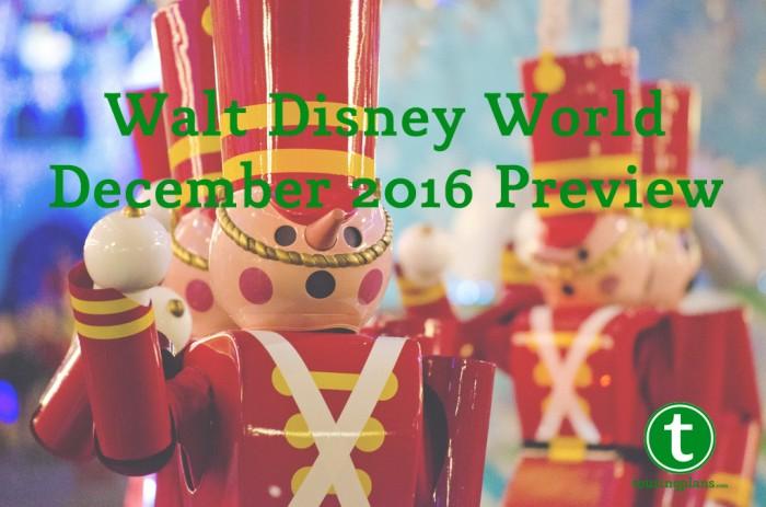 Walt Disney World December 2016